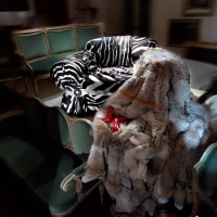 Roberto Cavalli Home 2013 - Casa Vogue Images