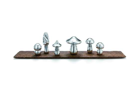 Wolfgang-Joop--Magic-Mushrooms--2013--800x140--h20-mm_low-res