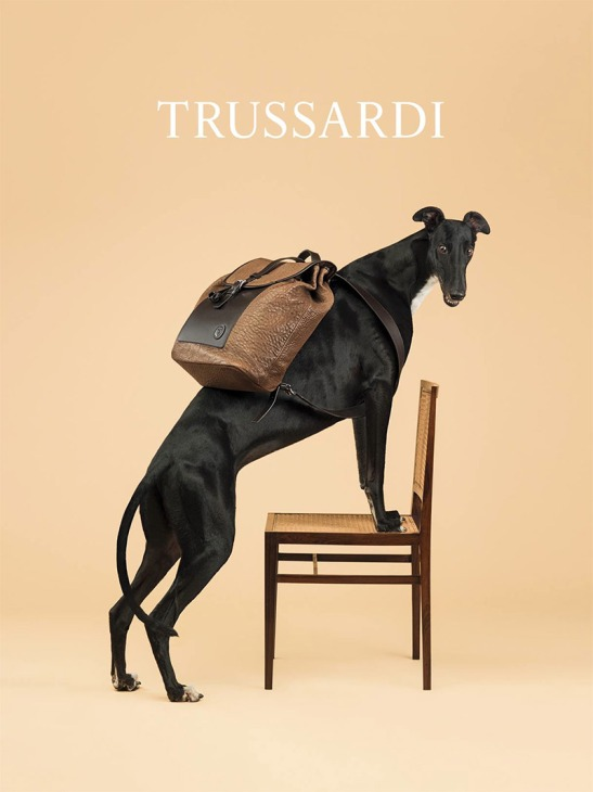 trussardi_ss14_campaign_fy3